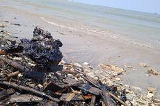 Limbah Hitam di Teluk Lampung, Pakar Lingkungan Sarankan Penelusuran Sumber Pencemaran Segera Dilakukan