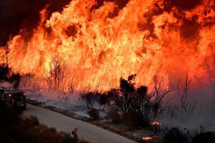 Pemadam kebakaran mencoba mematikan sisi utara Kebakaran Thomas dengan bumerang saat mereka terus berusaha memadamkan kebakaran besar di utara Los Angeles, dekat Ojai, California, Amerika Serikat, Sabtu (9/12/2017). California telah menghabiskan waktu selama sepekan untuk menghentikan kebakaran hutan, dampak dari munculnya api Thomas, dinamakan demikian karena api pertama kali muncul di dekat Perguruan Tinggi Thomas Aquinas, kemudian terus meluas menjadi kebakaran terbesar.