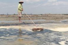 Seminggu Sebelum Hari Kemerdekaan, 75.000 Ton Garam Impor Masuk RI