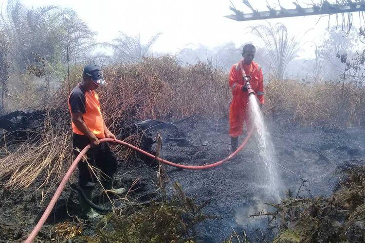 Petugas memadamkan api yang membakar lahan sawit milik warga Agam, Sumatera Barat