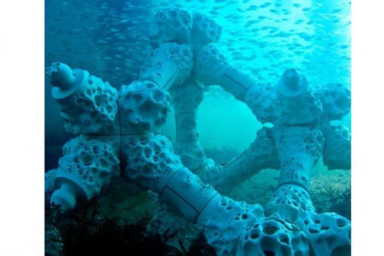Ilustrasi terumbu karang.