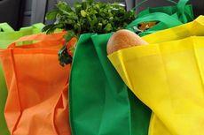 Sisi Buruk Tote Bag Pengganti Kantong Plastik