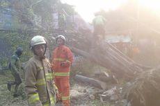 Pohon Tumbang di Jalan Komodor Halim dalam Penangan Petugas Damkar