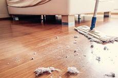 6 Tips Menghilangkan Debu di Rumah agar Lebih Sehat dan Bersih