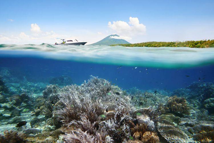 Terumbu karang di Pantai Likupang