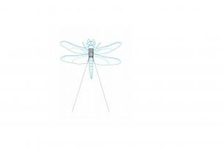 Visual seniman mengenai tas punggung elektronik yang direkatkan di punggung lalat untuk membantu para peneliti di Howard Hughes Medical Institute mempelajari cara capung ini terbang.