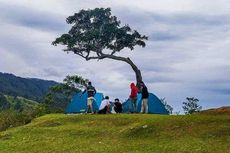Bukit Beta Tuktuk Samosir, Bisa Piknik di Atas Puncak Bukit