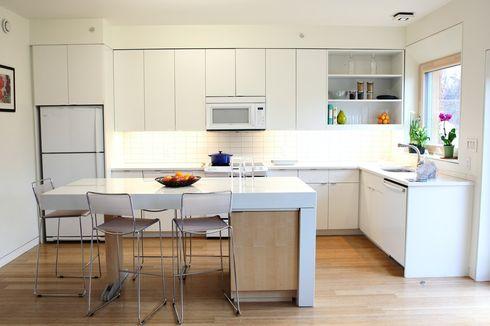 Tips untuk Menjaga Dapur agar Bebas dari Kecoak, Semut, dan Tikus