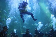 Peringati Hari Raya Nyepi, Akuarium Seaworld Disulap Menjadi Arena Duel Barong dan Rangda