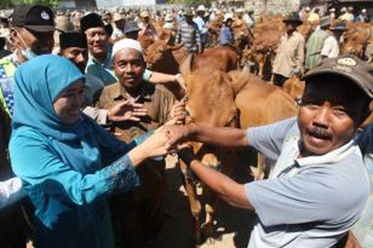Calon Gubernur Khofifah Indar Parawansa saat bertemu dengan para pedagang sapi dan peternak di Arosbaya, Bangkalan, Selasa (20/8/2013).