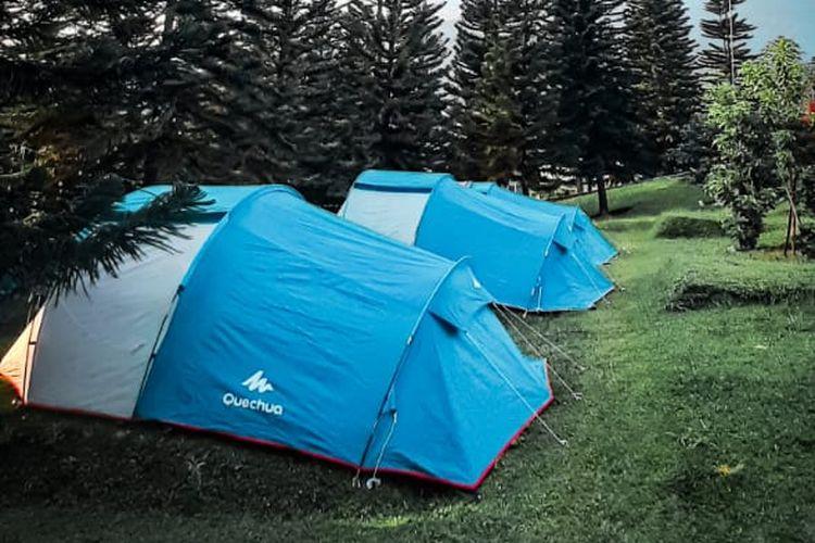 Tenda-tenda di Soekapi Camp, di tengah pohon-pohon pinus