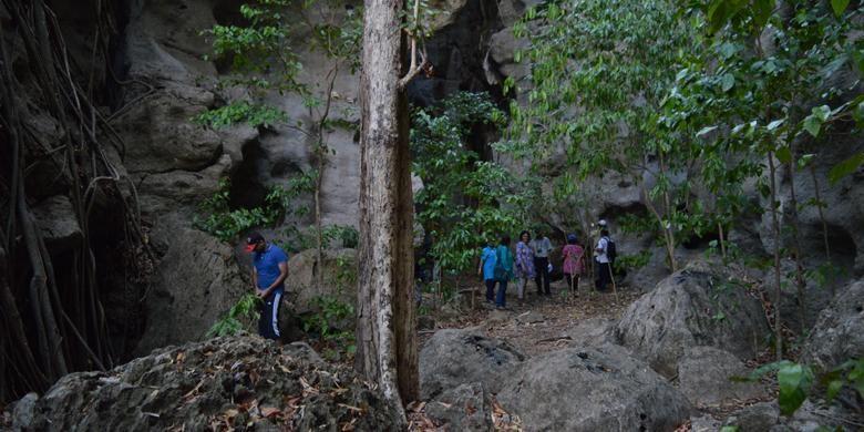 Pepohonan di dalam area Goa Batu Cermin, Desa Batu Cermin, Kecamatan Labuan Bajo, Manggarai Barat, Nusa Tenggara Timur, Rabu (18/11/2015). Obyek wisata Goa Batu Cermin memiliki luas 19 hektar dengan tinggi goa sekitar 75 meter.