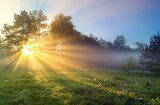 Kenapa Matahari Berwarna Kuning dan Langit Berwarna Biru Saat Siang Hari?