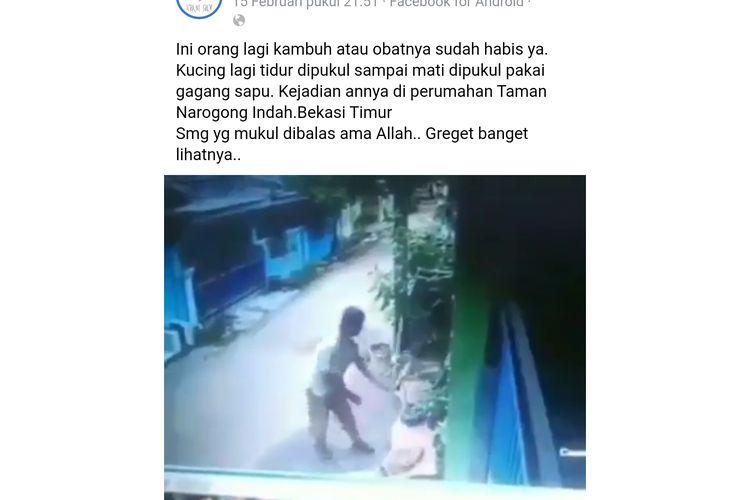 Peristiwa pemukulan kucing di Bojong Megah, Bekasi, Selasa (18/2/2020).