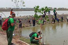 Restorasi Lahan Mangrove di Gresik, Antisipasi Dampak Perubahan Iklim dan Lingkungan
