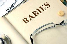 Pertama dalam 20 Tahun, 2 Bocah Tewas akibat Rabies di Malaysia