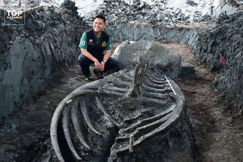 Nyaris Utuh, Kerangka Paus Purba Berusia 5.000 Tahun Ditemukan di Thailand