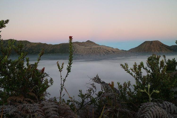 Pemandangan matahari terbit dari Bukit Mentigen, Cemoro Lawang, Desa Ngadisari, Sukapura, Probolinggo, Jawa Timur. Bukit Mentigen adalah salah satu alternatif tempat melihat matahari terbit selain Bukit Penanjakan di Taman Nasional Bromo Tengger Semeru.