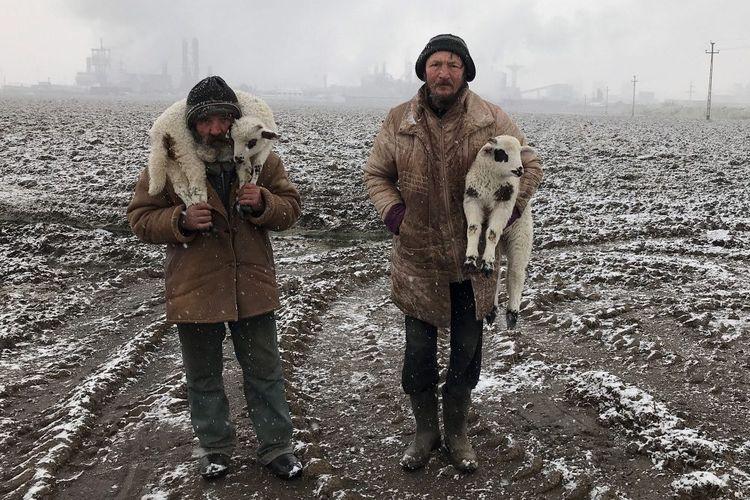 Foto bertajuk Transylvanian Shepherds yang diambil menggunakan kamera iPhone 7.