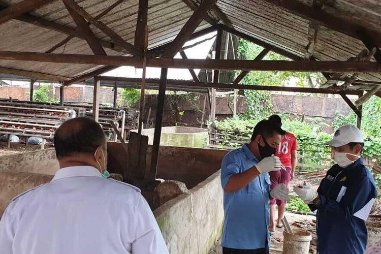 Ketua Perhimpunan Dokter Hewan Indonesia (PHDI) Cabang  Sumatera Selatan, saat mengambil sampel peternakan babi lantaran, ratusan babi disana mati secara mendadak diduga terkena virus fulu babi afrika.