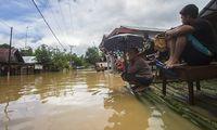 Waspada Ular Keluar Saat Banjir, Begini Cara Mencegahnya