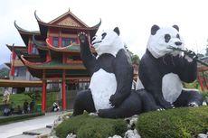 Tiru China, Pemerintah Ingin Sewakan Hewan Langka ke Negara Lain