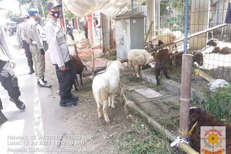 Pemerintah Kota Jakarta Timur mulai mengendalikan penampungan hewan kurban. Kasatpol PP Jakarta Timur Budhy Novian mengatakan, pengendalian itu sudah dimulai pada Senin (12/7/2021).