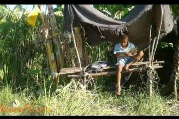 Foto :Thomas Julio Laga (9), sisswaSekolah Dasar Inpres (SDI) Danga, Kecamatan Aesesa, Kabupaten Nagekeo, NTT belajar di kebun, Sabtu (2/4/2020).