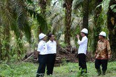 Jokowi ke Sulawesi Utara, Dijadwalkan Tinjau Tol dan KEK Bitung