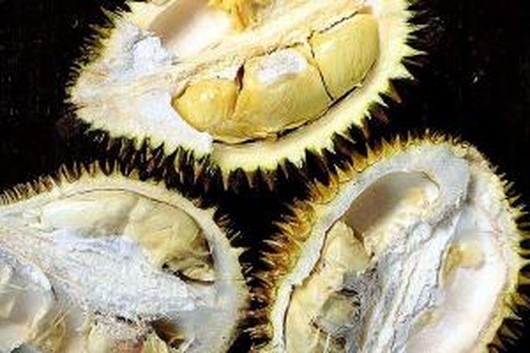 Durian Sumatera
