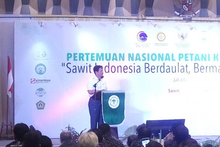 Menteri Koordinator Bidang Kemaritiman Luhut Binsar Panjaitan saat di Jakarta, Kamis (28/2/2019).