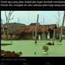 Beredar Foto Air Banjir di Pekalongan Berwarna Hijau, Apa Sebabnya?
