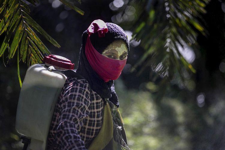 Seorang pekerja perempuan berjalan dengan penyemprot pestisida di punggungnya di perkebunan kelapa sawit di Sumatera, Indonesia, Sabtu, 8 September 2018. Beberapa pekerja menggunakan pasta kuning yang terbuat dari bubuk beras dan akar lokal sebagai tabir surya.