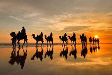 Menikmati Sunset Pantai Australia di Atas Unta