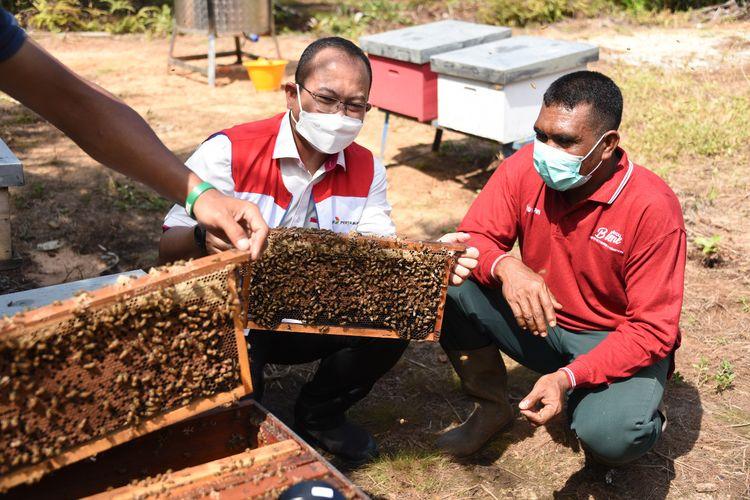 Budidaya Lebah Madu di Desa Tanjung Leban, Bengkalis, Riau.