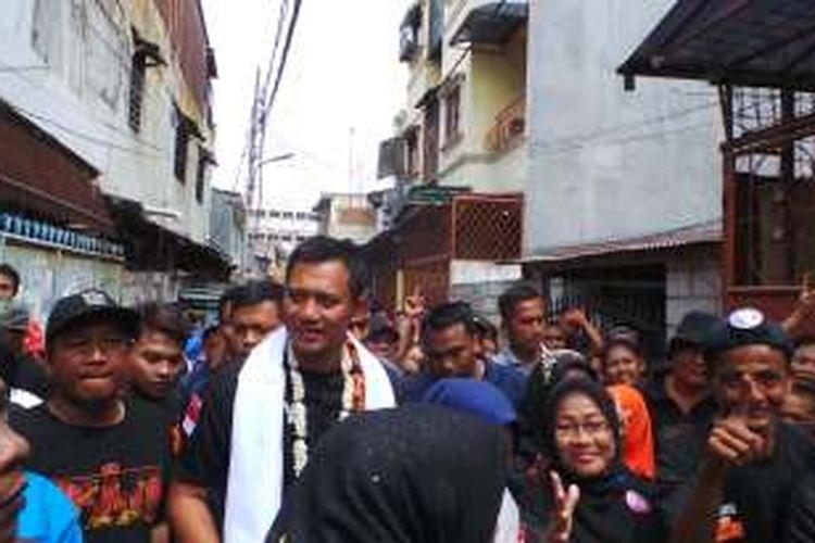Calon gubernur DKI Jakarta Agus Harimurti Yudhoyono berkampanye di kawasan Tanah Sereal, Tambora, Jakarta Barat, Kamis (29/12/2016).