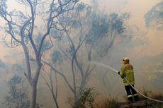 TNI Kirim Bantuan, Bagaimana Kondisi Terkini Kebakaran Hutan di Australia?