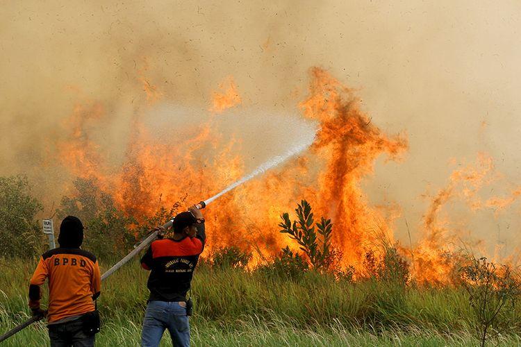 Foto dirilis Jumat (11/10/2019), memperlihatkan petugas Badan Penanggulangan Bencana Daerah (BPBD) Kalsel bersama Masyarakat Peduli Api (MPA) berupaya memadamkan api yang membakar semak belukar di Banjarbaru, Kalimantan Selatan. Dampak karhutla Indonesia menjadi sorotan di dalam hingga luar negeri, terkait kabut asap yang tak hanya melumpuhkan aktivitas warga dan mengganggu kesehatan, namun juga memakan korban jiwa, termasuk hewan-hewan yang menghuni hutan.