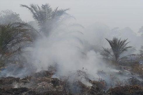 5 Fakta Karhutla di Sumatera, Terdeteksi 59 Titik Panas hingga Terbanyak di Riau, 27 titik