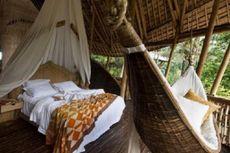 Rumah Bambu Seharga Miliaran Rupiah Diminati Asing!