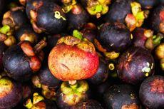 Manggis Indonesia Boleh Masuk ke Selandia Baru