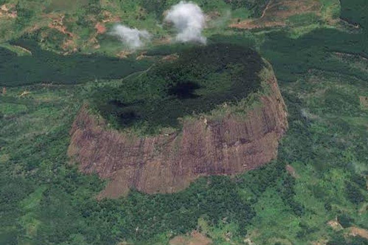 Hutan Gunung Lico.