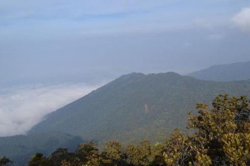 Pendaki Gunung yang Hilang di Pangrango Sempat Pingsan