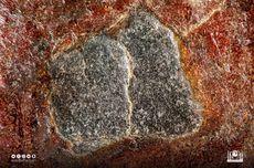 Melihat Hajar Aswad: Asal Mula, Sejarah, dan Penampakan Batu dari Surga