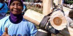 Indonesia Siap Ekspor Produk Peternakan ke Timor Leste