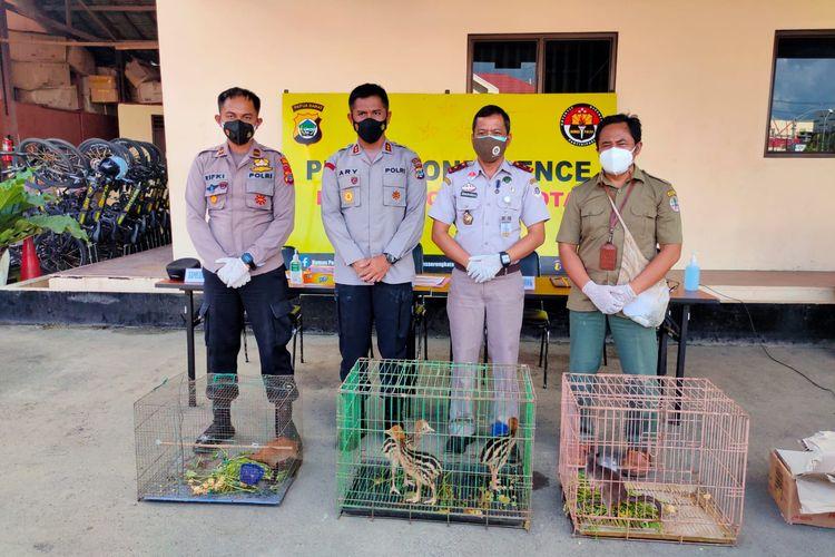 Enam ekor satwa liar dilindungi yang diamankan petugas di Sorong, Senin (16/8/2021).