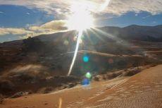 Benarkah Gurun Sahara Pernah Subur?