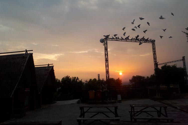 Burung-burung terbang di atas langit Puncak Sosok, Kabupaten Bantul, Yogyakarta.