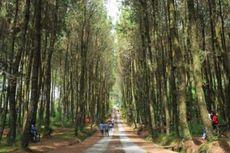 Polisi Duga PNS yang Tewas di Hutan Pinus Bandung Dibunuh di Tempat Lain