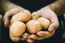 6 Makanan Rendah Natrium untuk Meningkatkan Kesehatan Jantung